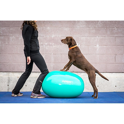 FitPAWS Sport Egg Canine Stability Ball