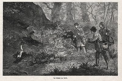 Ferret Trained to Hunt Rabbits for Hunters, 1870s Antique Engraving Print