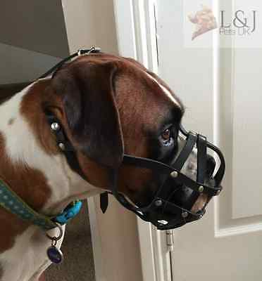 Leather Dog Muzzle for Boxer and Other dogs with short snout