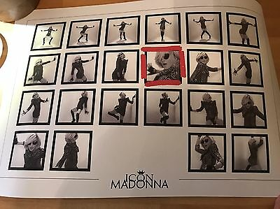 MADONNA - 2010 ICON Celebration Litho Lithograph Official Fan Club Poster RARE