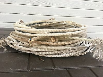 Five (5) Used TAN Lariat Team Ropes Good For Décor or Roping Practice 30' to 35'