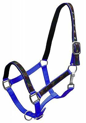 Royal Blue Nylon Horse Halter Colorful CELTIC KNOT Overlay Print New Horse Tack