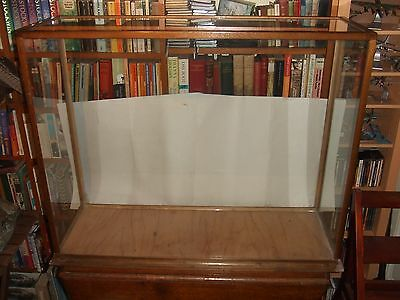 vintage display taxidermy cabinet case reproduction victorian museum style