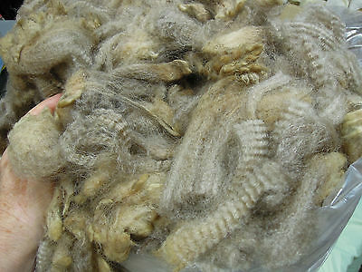 Spinning, felting fleece.  Raw Sheep wool. Spin Felt 1.6kg Grey/Beige Corridale
