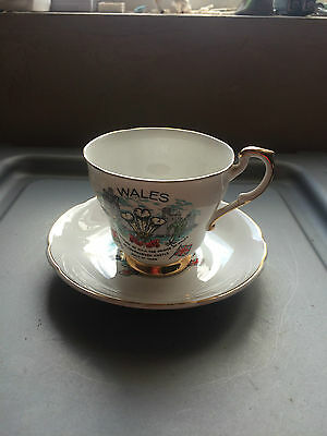 Investiture of Prince Charles cup and saucer