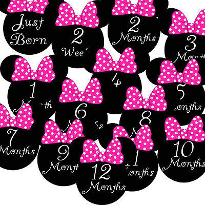 14 Girl Mouse Ears Pink Black Baby Traditional Monthly Milestone Stickers