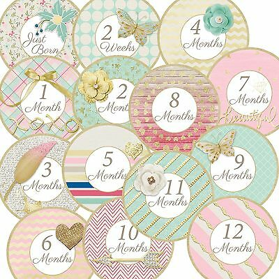 14 Touch of Gold Mint Pink Cottage Chic Baby Girl Monthly Milestone Stickers
