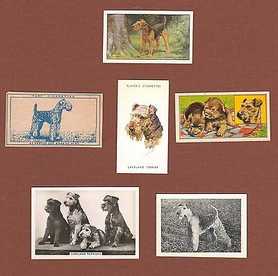 Lakeland Terrier dog cigarette trade cards set of 6