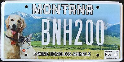 """MONTANA """" HOMELESS ANIMALS - CAT - DOG - PETS """" MT Graphic License Plate"""