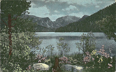 Vintage Old Postcard Unused Mt Baldy and Grand Lake Rocky Mountain Park Colorado