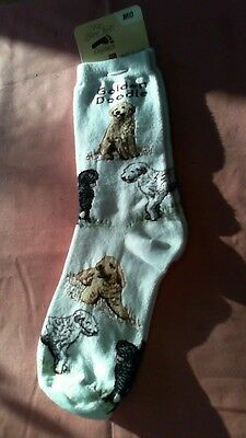 Goldendoodle Golden Doodle Socks by For Bare Feet NWT