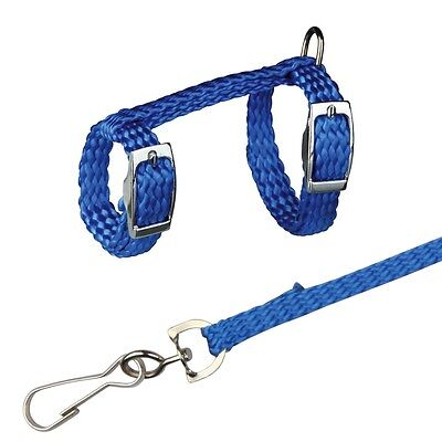 Ferret or Rat Harness & Lead Set Blue Harness with Matching Leash