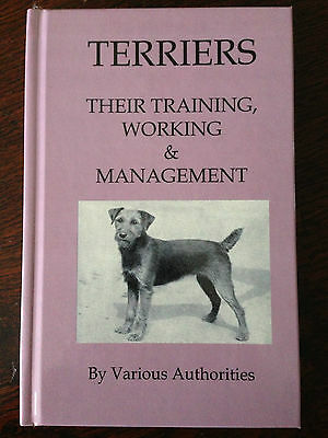 terriers dogs working ratting digging fox badger bull terrier bedlington border