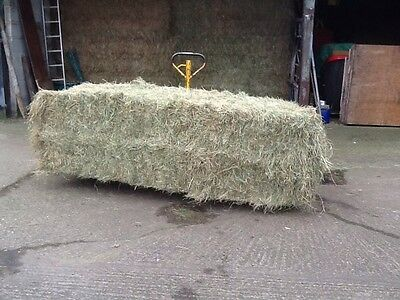 Hay For Sale - Large Rectangular  Bale 2016 Meadow Hay