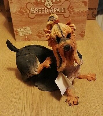 a breed apart dog Tixie the Yorkshire terrier