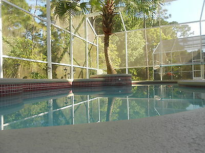 FLORIDA Orlando Kissimmee VILLA holiday home 3 bed 2 bath pool DISNEY 10 mins