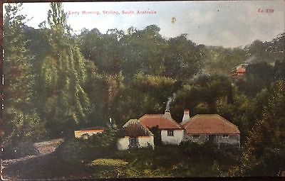 Antique Australia Pc Early Morning Stirling Adelaide Area South Australia 1910