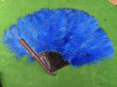 Beautiful Antique Vintage Ostrich Feather Hand Fan with Faux Tortoiseshell #2