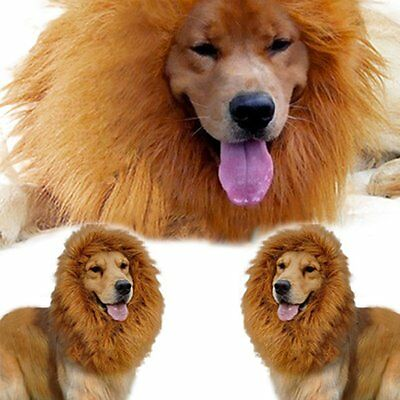 Halloween Pet Clothes Fancy Dress Up Costume Cat Lion Mane Wig for Large Dogs UK