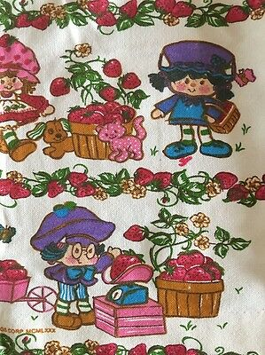 Pair Of Vintage Esmond Canada STRAWBERRY SHORTCAKE Curtain Panels Drapes MINTY!!