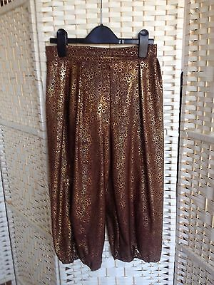 dance costume, brown and gold ali barber style trousers used in a modern dance