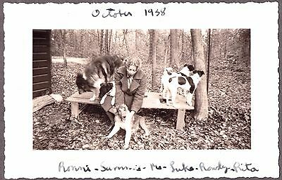 Vintage Photograph 1938 Collie & Smooth Fox Terrier Dogs Massachusetts Old Photo