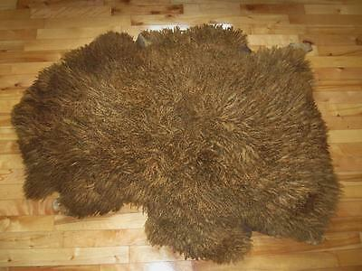 Real Buffalo Bison Taxidermy Fur Pelt Leather Rug Blanket Tanned