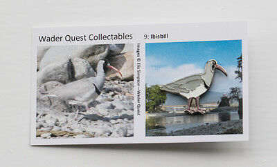 Not RSPB pin badge WADER QUEST Ibisbill