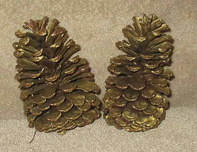 """2 Painted Gold Pine Cones 5"""" Tall Crafts Wreaths Holidays Christmas (CS38)"""