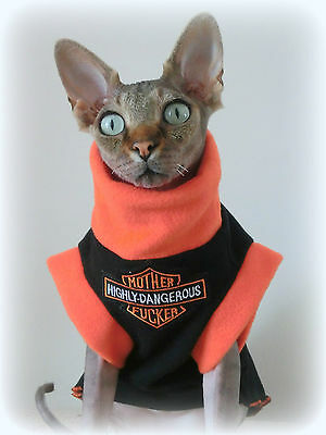 HIGHLY DANGEROUS Sphynx cat clothes, sweater for a cat, pet clothes, hairless
