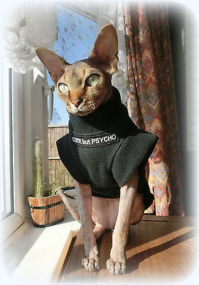 kitten CUTE but PSYCHO Sphynx cat clothes, sweater for a cat, pet clothes