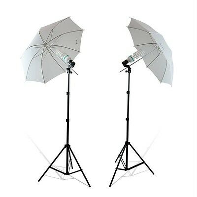 400 Watt continuous lighting kit for photography or video beginners kit (VL-200)