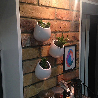 3PCS/Pack Quality White Ceramic Pots,Wall Succulent Planters,Wall Ceramic Vase