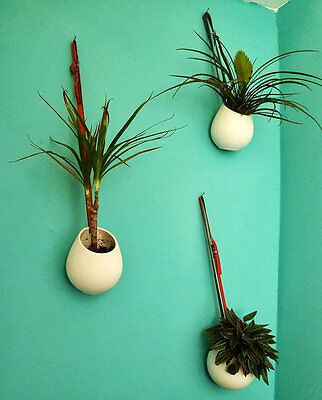 White Ceramic Wall Vase,Wall Hanging Plant Terrarium,Indoor Wall Planters Garden