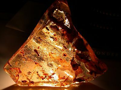 SWARM of 30 Beetles, Spiders, Larva, Wasps in HUGE 123 g Colombian Copal Amber