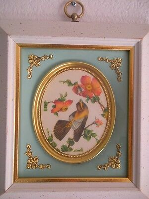 (*_*) Vintage Penney's French Style Finch Bird Art Oval Wall Plaque Shadow Box