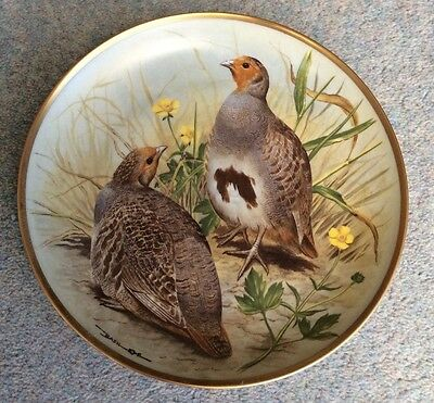"""BASIL EDE- GAME BIRDS OF THE WORLD - Common Partridge - 9"""" - France"""