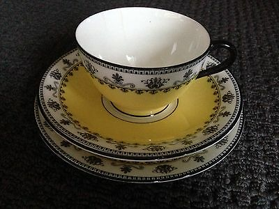 AYNSLEY - Pattern 3268 Canary Yellow And Black Trio