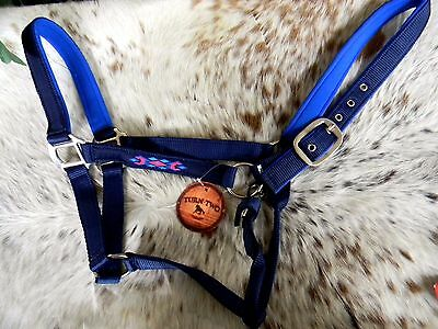 Navy Blue Nylon Horse Padded Halter Navajo Embroidered Design New Horse Tack