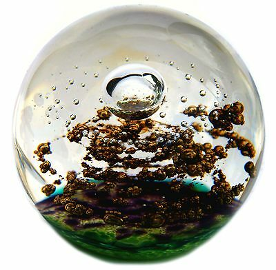 Selkirk Glass ~ Golden Reef Paperweight ~ Limited Edition (500) ~ 1998