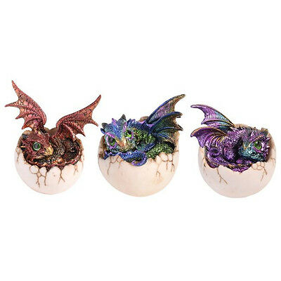 Dragon Baby Hatching from Egg Purple Green Statue Figurine Ornament *Set of 3*