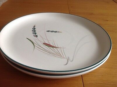 """Vintage Denby Greenwheat  2 Dinner Plates 10"""" Excellent Condition"""