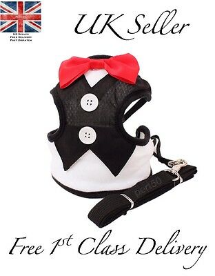 Tuxedo Harness & Lead Small Dog Puppy Cute Funny Suit Pet Red Bow Tie Chihuahua