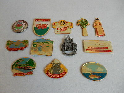 One Selected Metal Souvenir Fridge Magnet from Wales