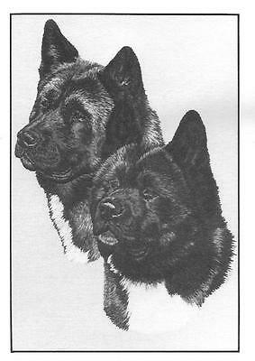 Akita Note Cards by Chris Lewis Brown - Pk of 10 cards