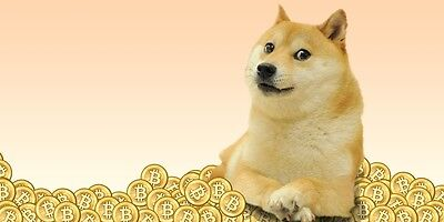 *133 For Sale 500 Dogecoin (0.5K DOGE) Direct to wallet quick DOGE mining contra