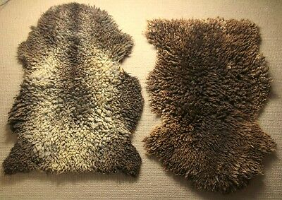 Pair Vintage Curly Shearling Rugs Tanners Classic Sheepskins NZ Mid Dark Brown