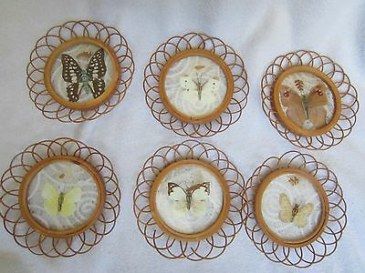 Vintage Set Of 6 Bamboo Coasters With Stand For Coasters~Butterflies On Coasters