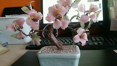 Vintage Chinese Bonsai Tree.
