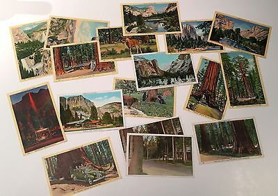 Vintage YOSEMITE California Postcards Lot of 17 Never Posted